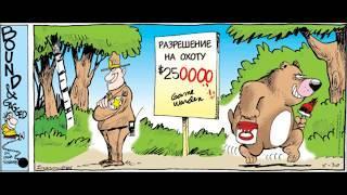 лучшие весёлые карикатуры и картинки про медведей и охотников . часть 2