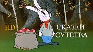 """Советские мультфильмы """"СКАЗКИ СУТЕЕВА"""" (сборник) HD"""