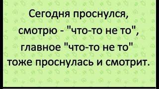 Смешные анекдоты и приколы/Юмор вокруг нас ч.12