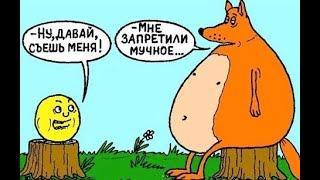 Шутки, юмор на тему кандиды, ЗОЖ (8 мая 2019)