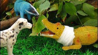 КРОКОДИЛ ЗАБОЛЕЛ!!! Кто у нас смелый? Кто вылечит крокодила? Мультфильмы про животных для детей