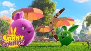 Солнечные кролики | Прыжки Кролики | Мультфильмы для детей | WildBrain