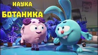 Ботаника - сборник. Смешарики. ПИН - код   Познавательные мультфильмы