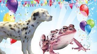 ДЕНЬ РОЖДЕНИЯ ЛУЧШЕГО ДРУГА и ВРЕДНАЯ ЛЯГУШКА. Мультфильмы про животных для детей