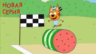 Три кота | Арбузный день | Серия 122 | Мультфильмы для детей