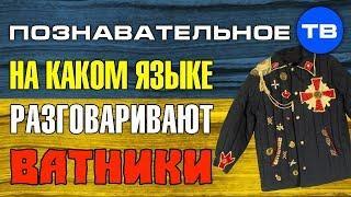 Как делают Украину 3: На каком языке разговаривают ватники? (Познавательное ТВ, Елена Гоголь)
